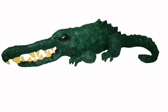 Brock the Croc_IMG_6777